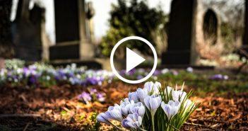Washington legalises composting of human bodies