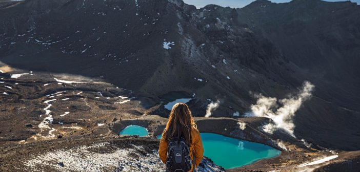 Will New Zealand's tourism industry survive?